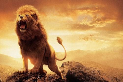 ホット轟音王の動物の-ライオン野生動物生地シルク壁ポスター印刷画像用ギフト.jpg